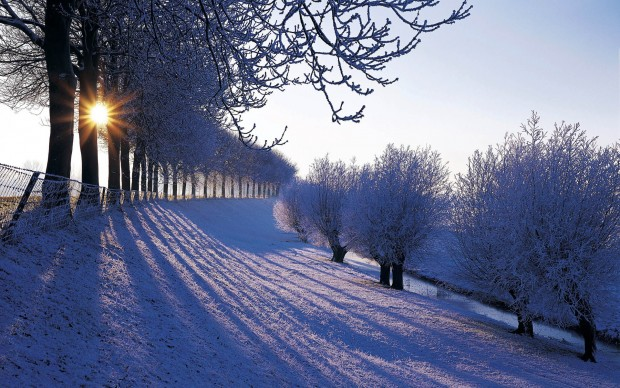 Snow wallpapers free download