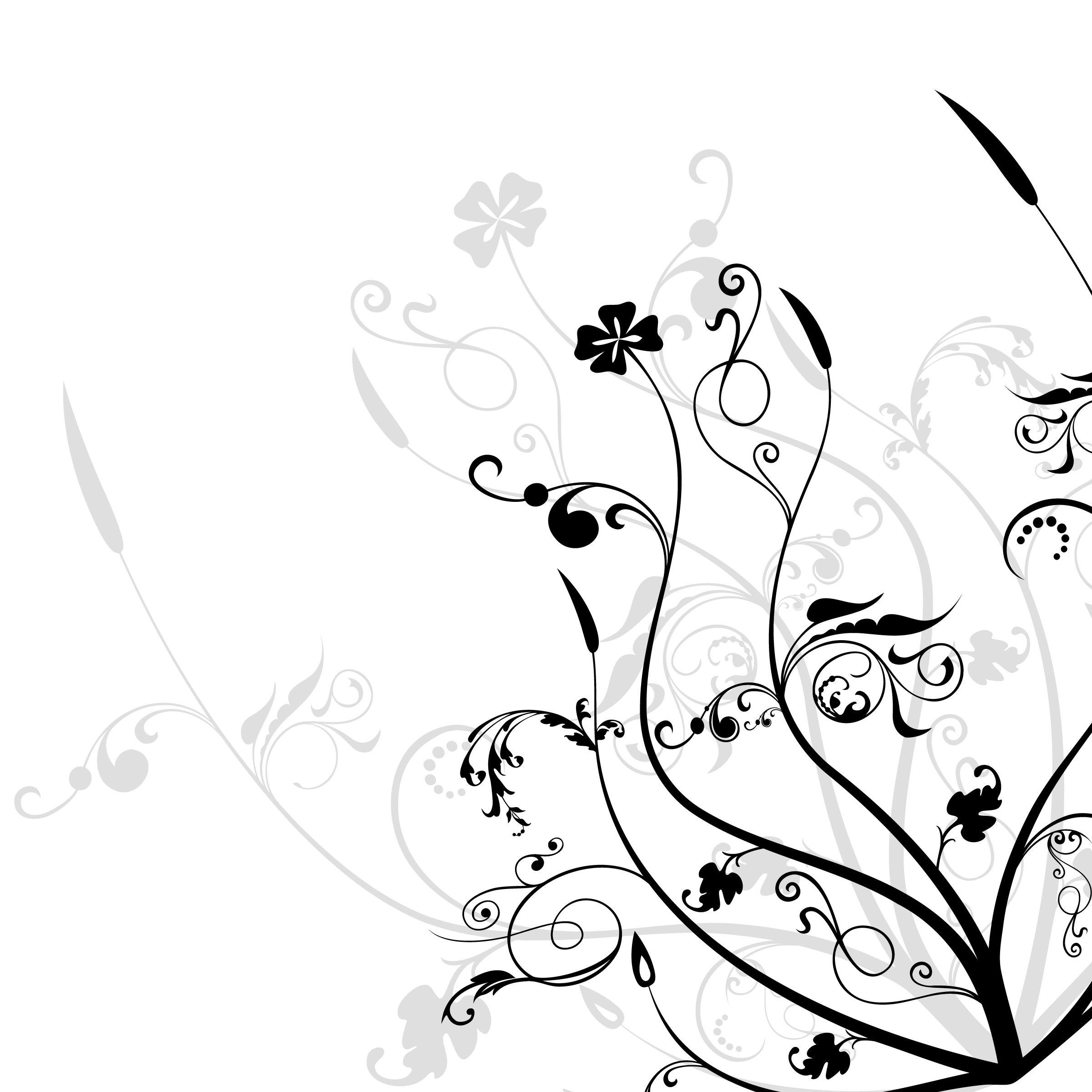 Black and white flowers wallpapers HD | PixelsTalk.Net