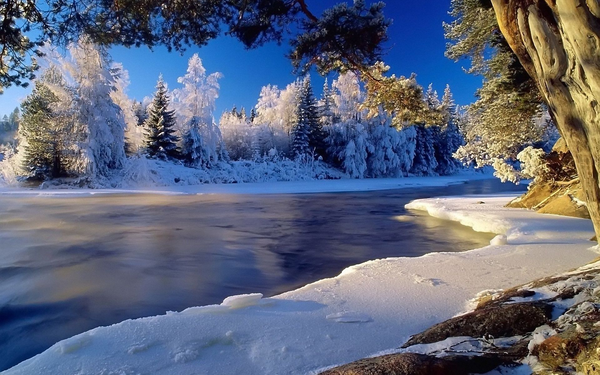 Winter Landscape Wallpaper HD