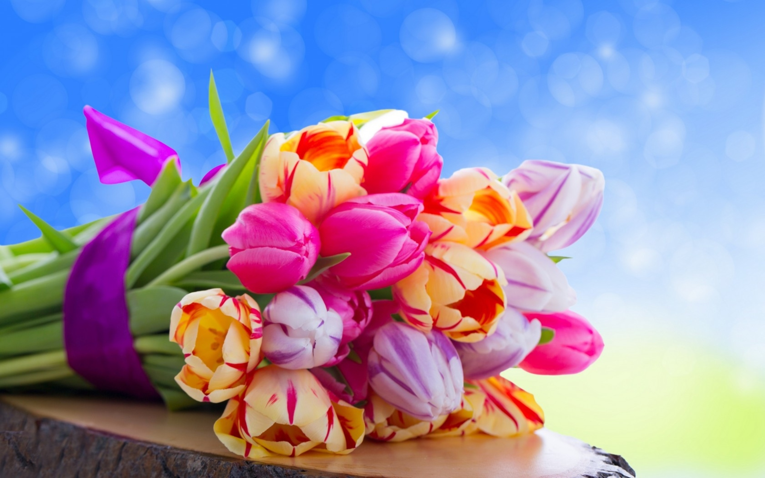 Colorful Flowers Wallpapers HD | Wallpapers, Backgrounds, Images ...
