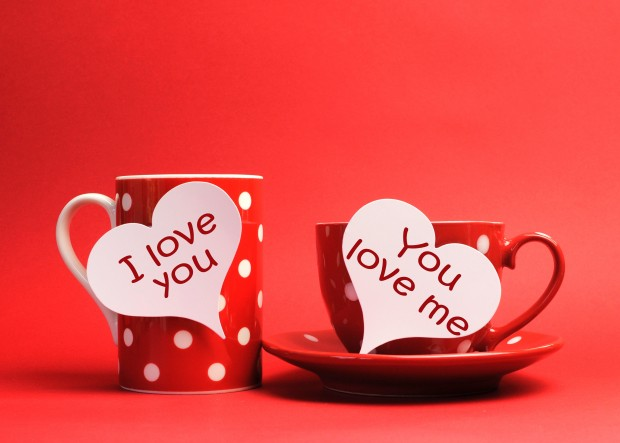 I love you on cups valentines day hd wallpaper image.
