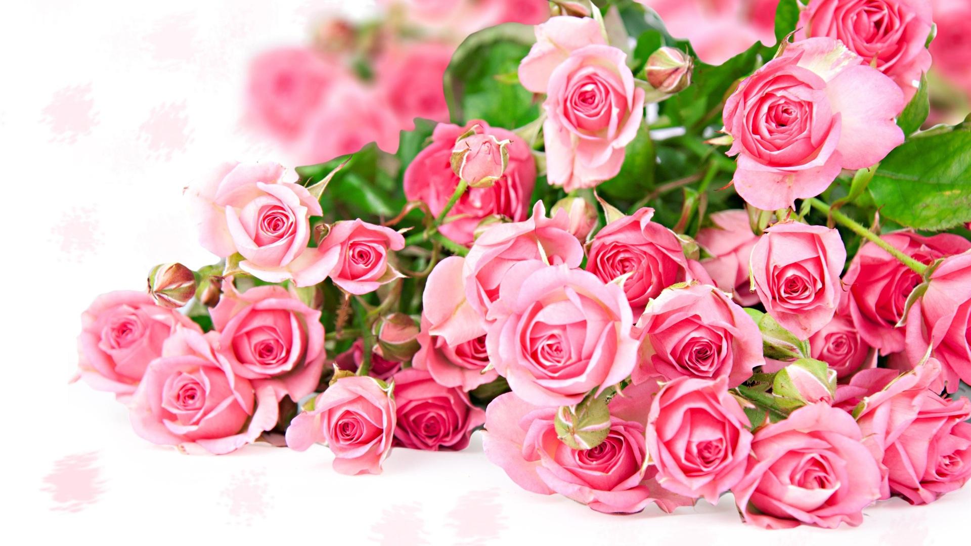 Розы букет  № 3014988  скачать