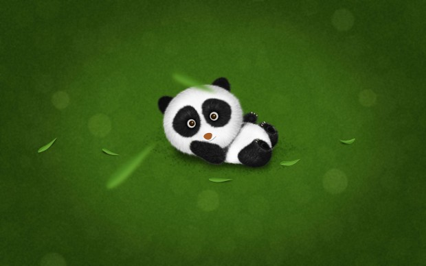 Cute Panda HD Wallpaper Pictures.
