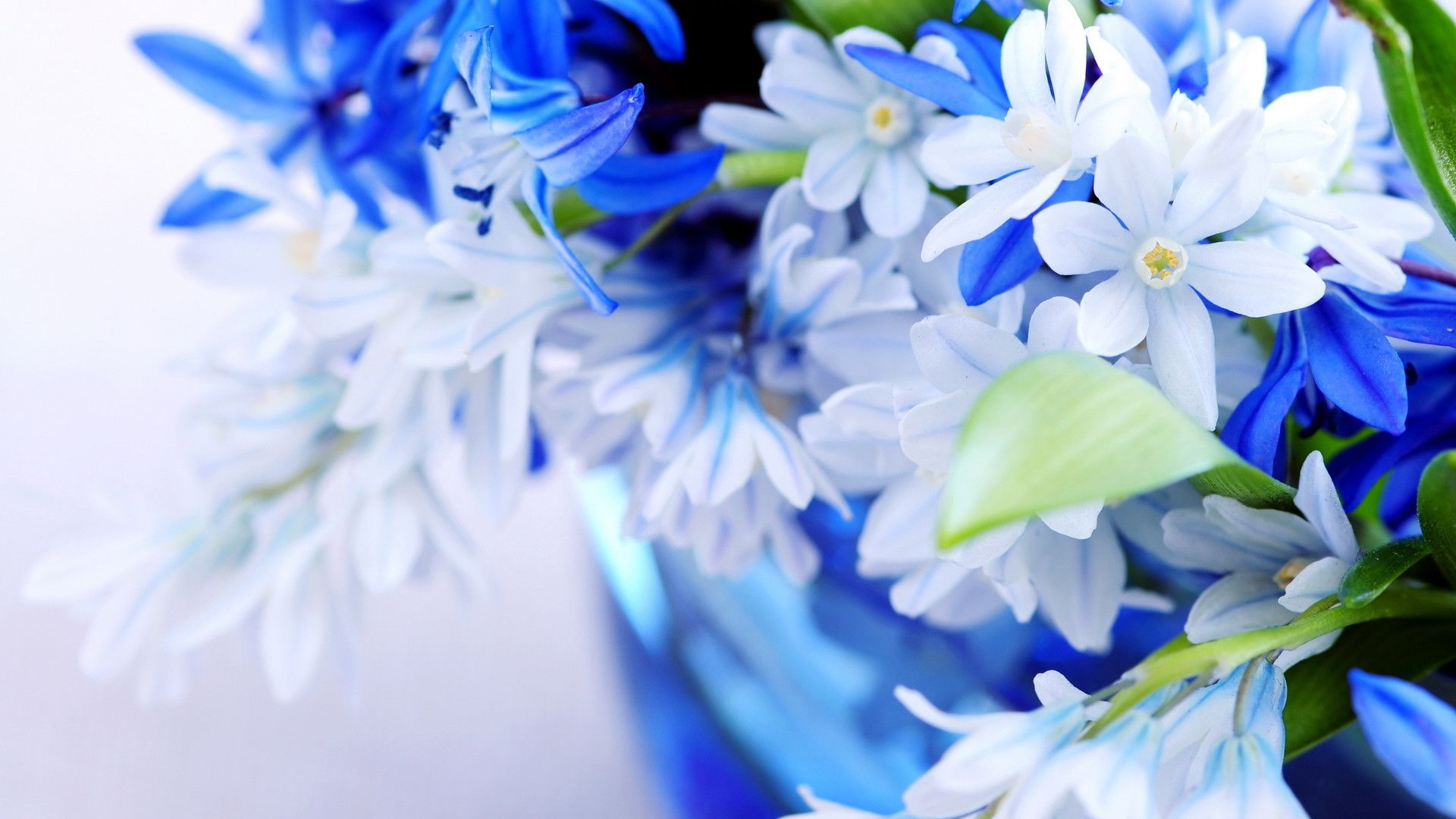 Desktop Wallpaper HD 3D Full Screen Flowers