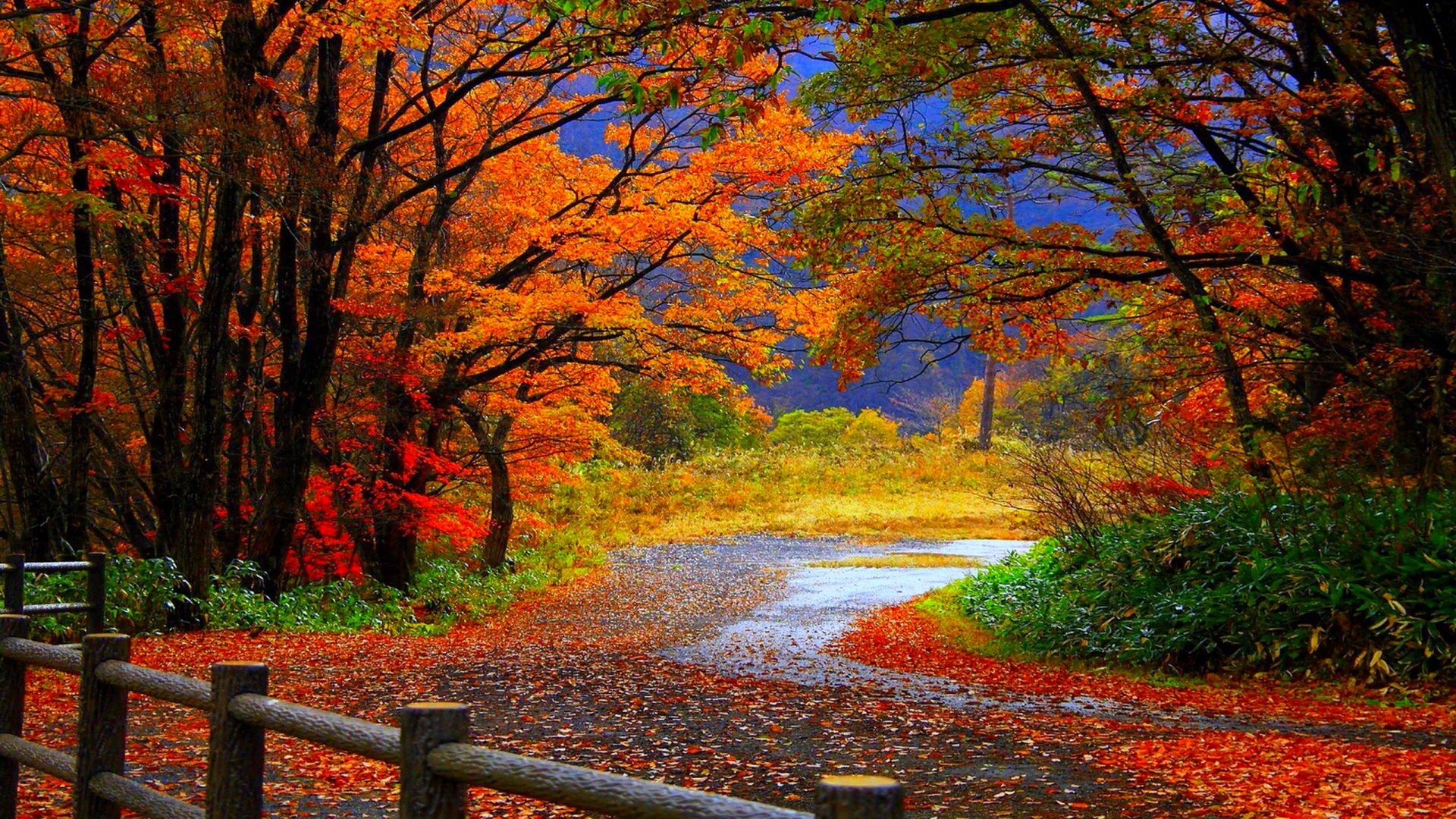 Fall Desktop Wallpapers Hd Pixelstalk Net