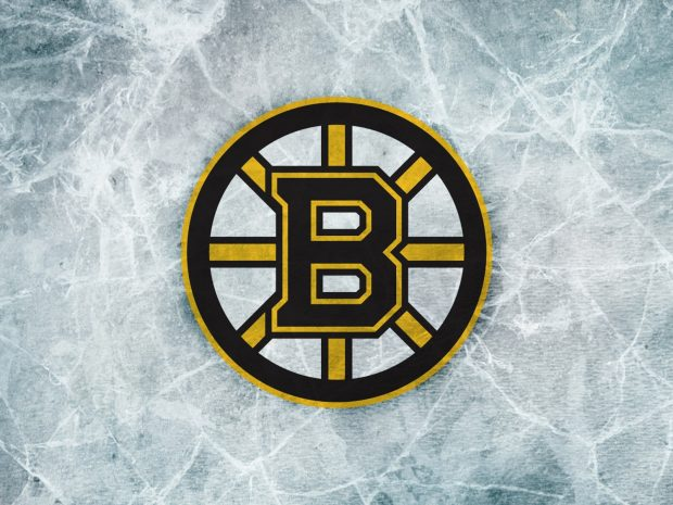 Boston Bruins Logo HD Wallpapers.