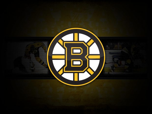 Boston Bruins Logo Images.