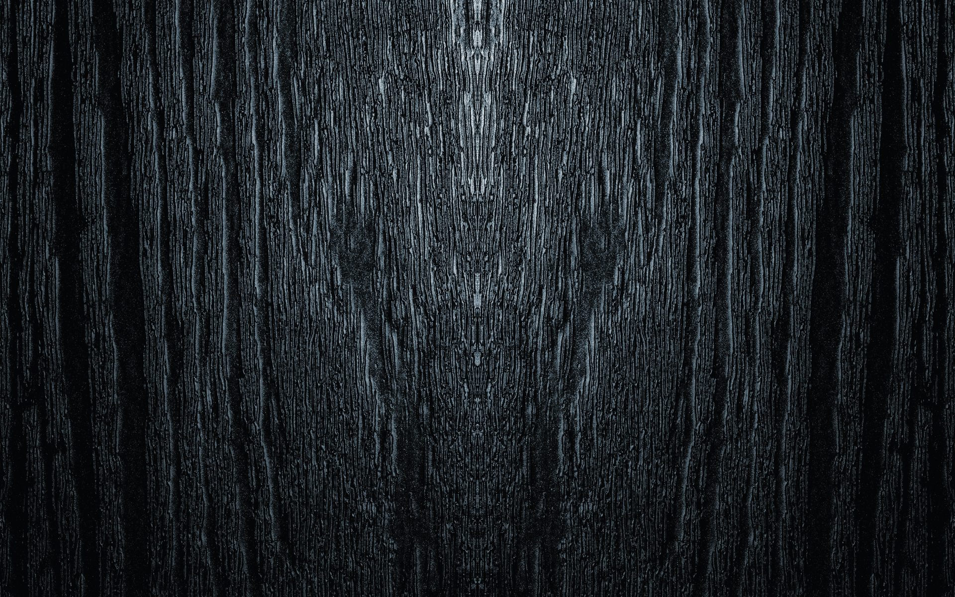 Dark Woods HD Background.
