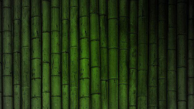 Desktop HD Bamboo Backgrounds.