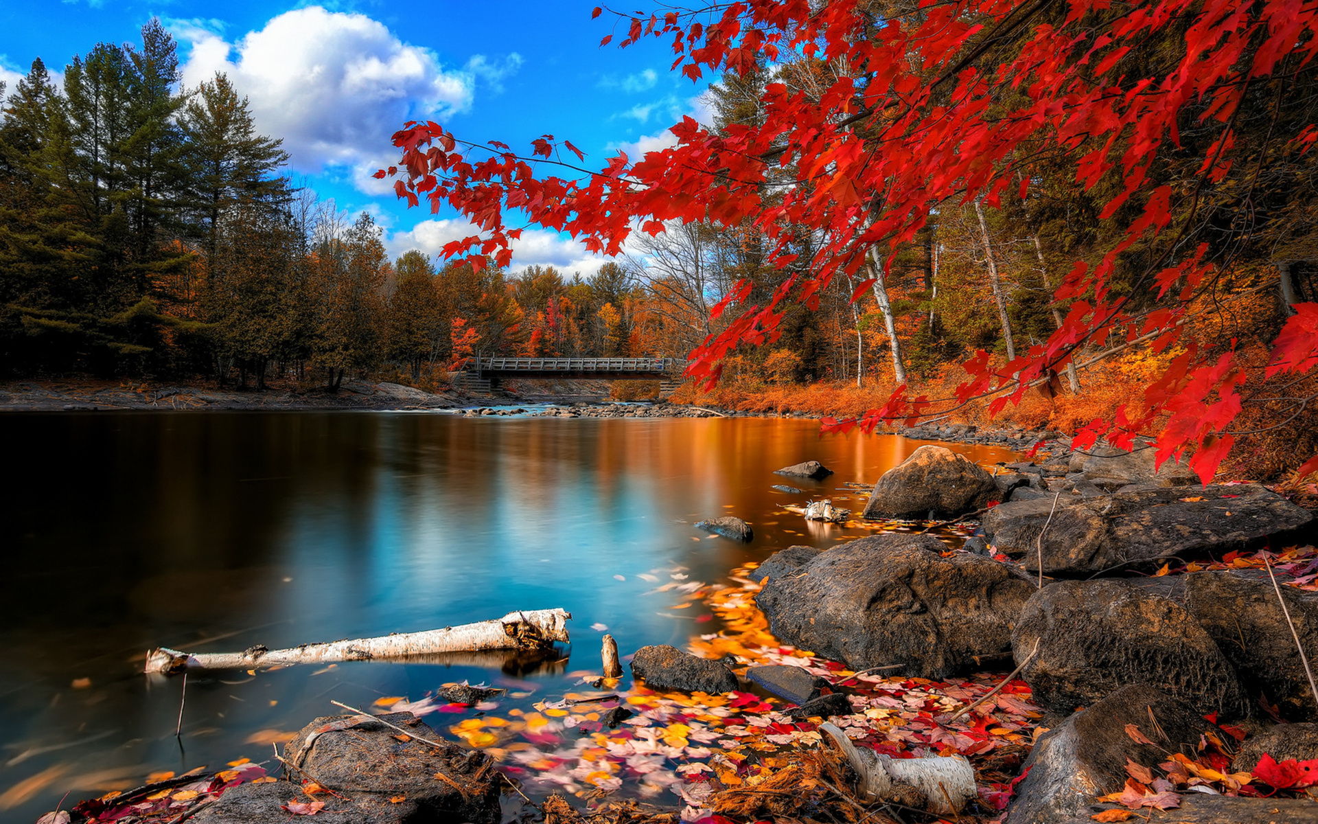 Desktop outstanding backgrounds fall hd download.