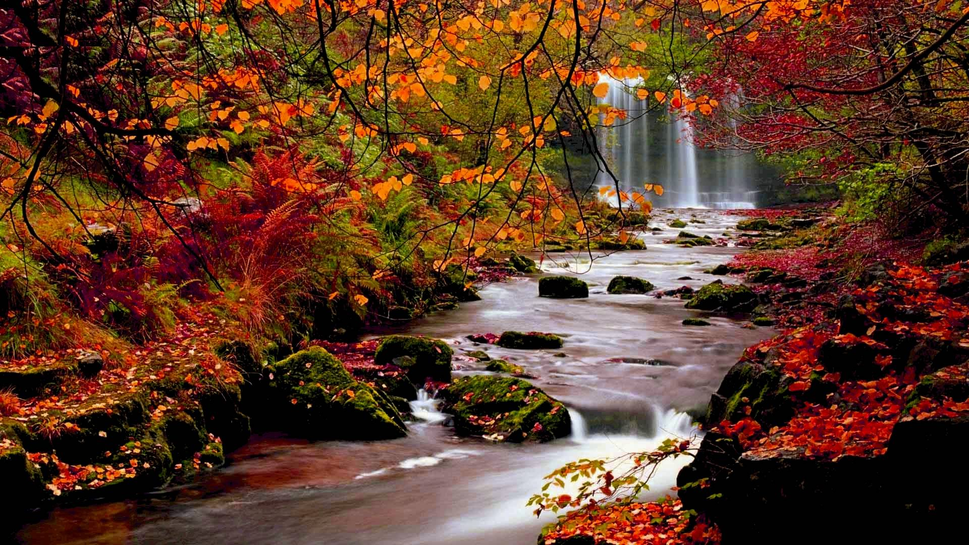 fall backgrounds for desktop