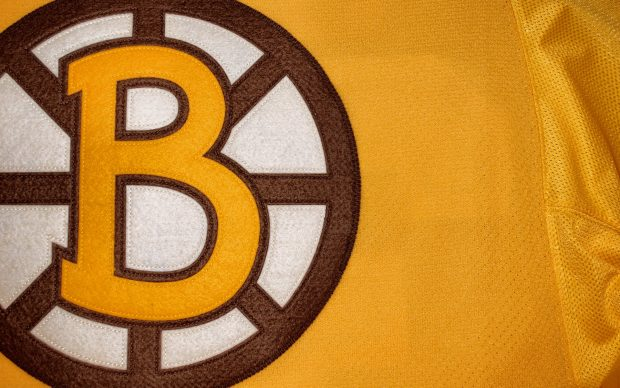 Free Download Boston Bruins Logo Image.