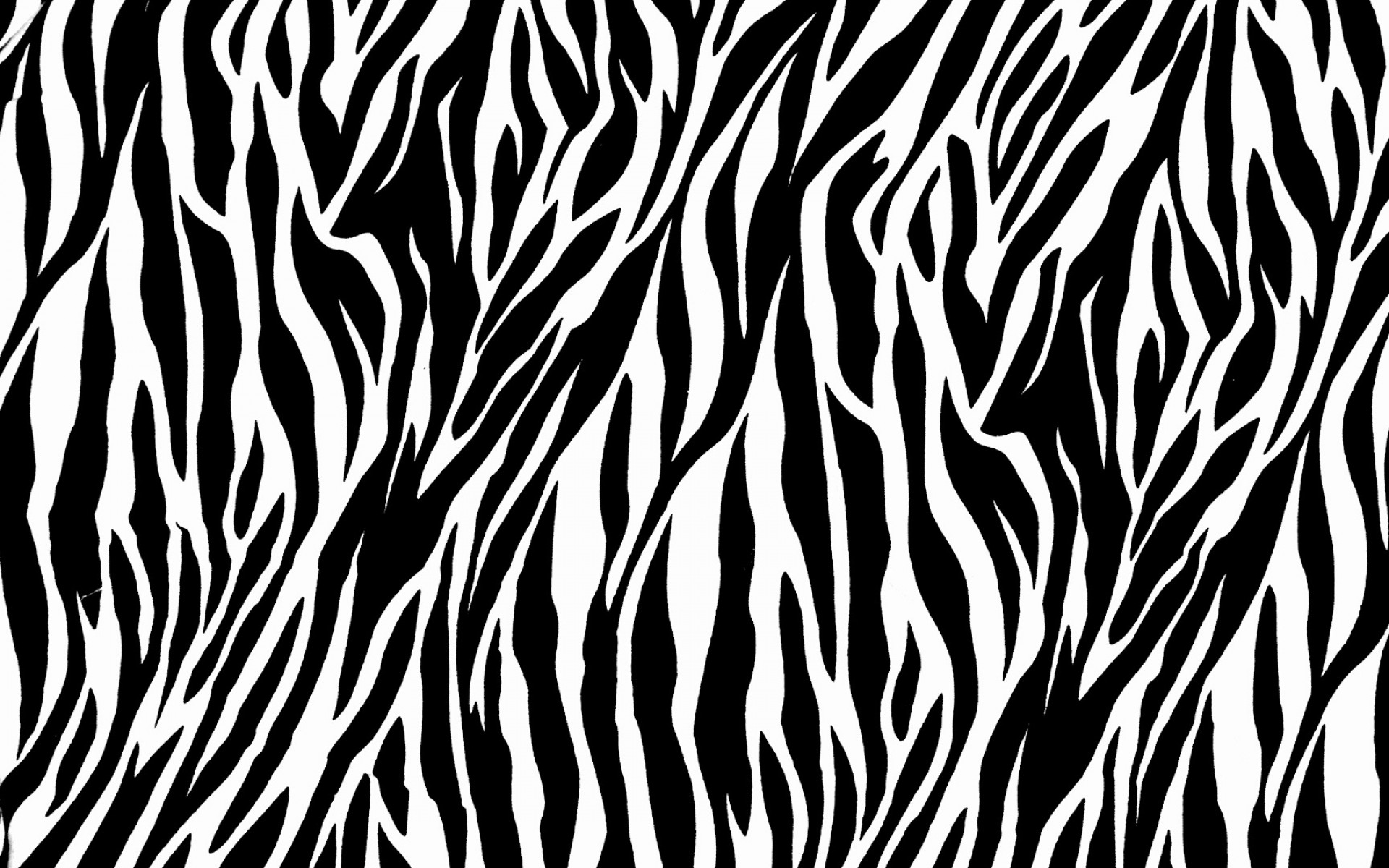 Zebra Print Pictures HD.