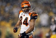 HD Cincinnati Bengals Pictures.