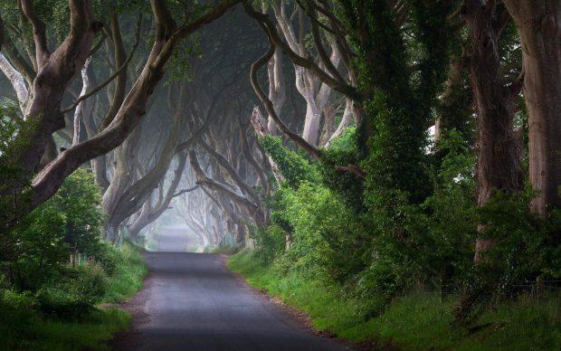 Ireland Background Free Download.