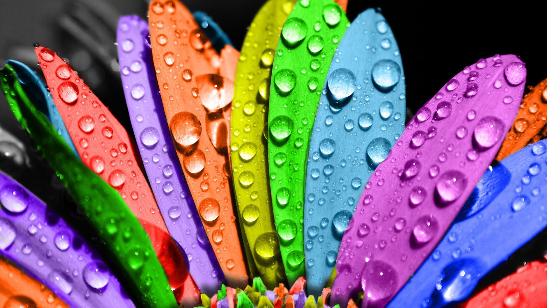 Download Free Pretty Colorful Wallpapers | Wallpapers, Backgrounds ...