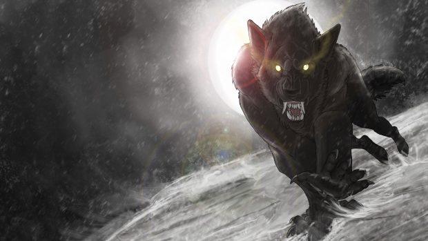 Werewolf Images.