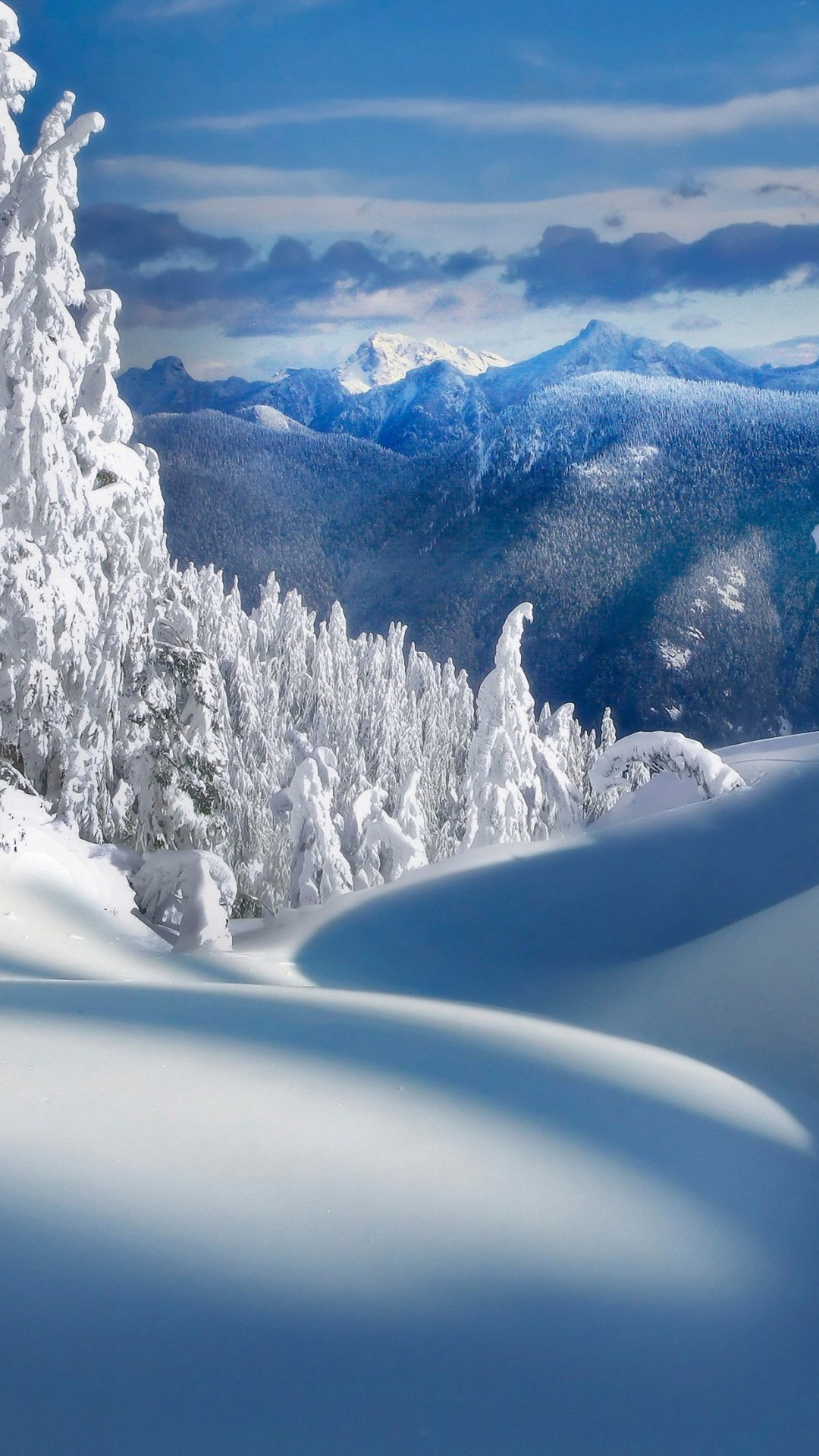 Free Download Winter Wallpapers for Iphone   HD Wallpapers ...  Free Download W...