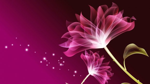 Flower nature beautiful wallpapers desktop.