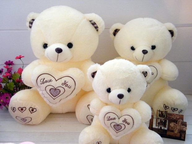 White Teddy Bear Doll with Love for Romantic Background.