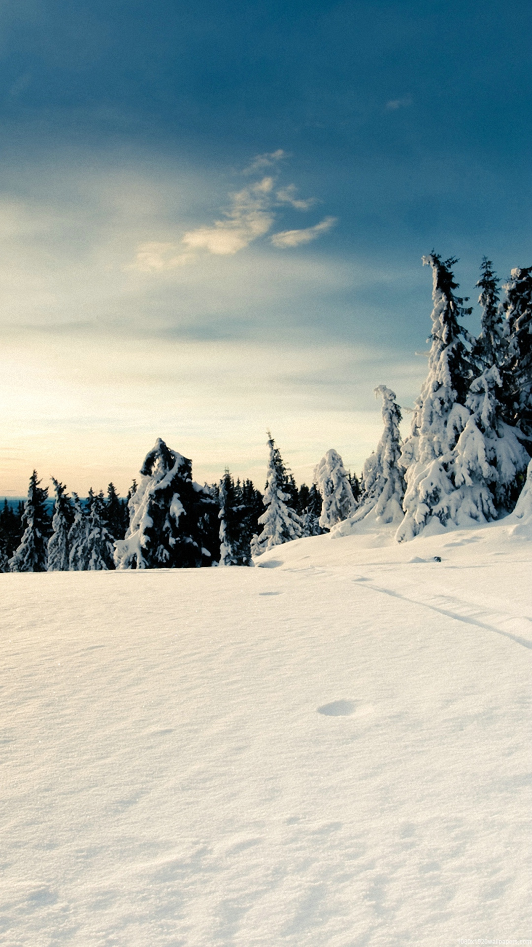 Winter Backgrounds For Iphone HD