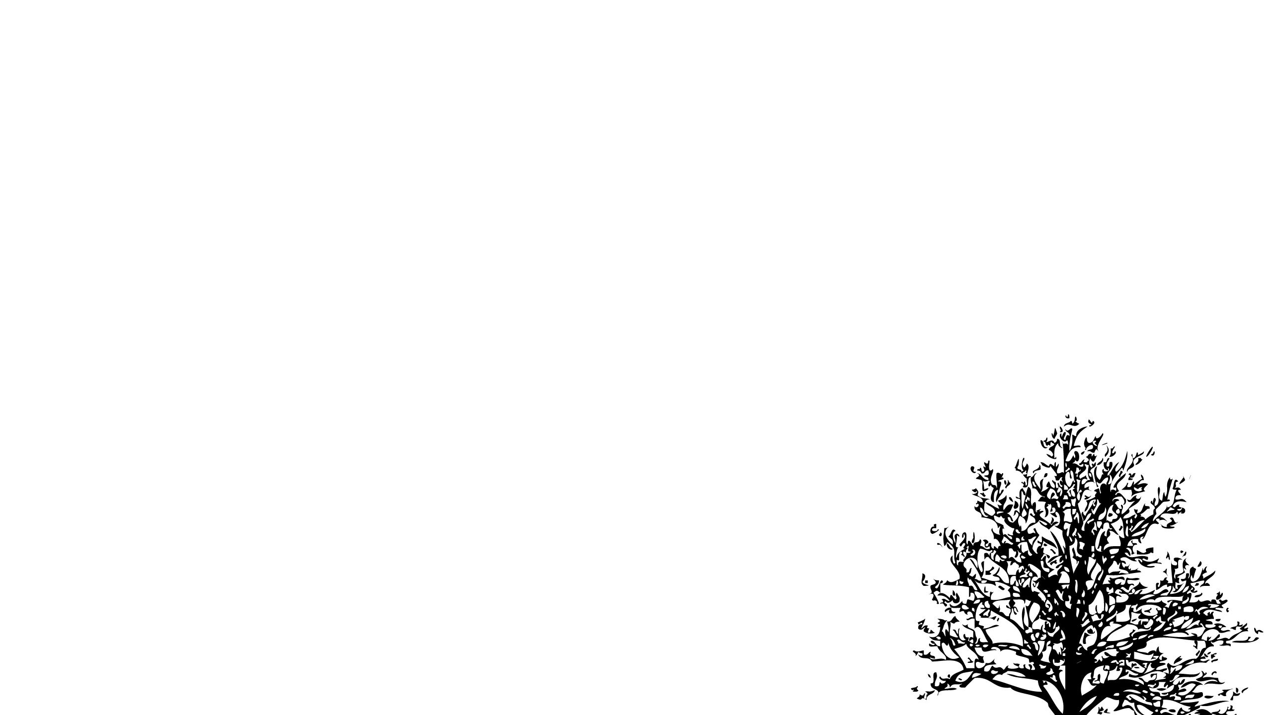 All White Background For Desktop Pixelstalk Net