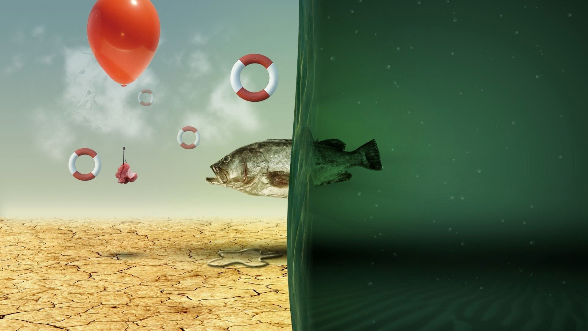 New best backgrounds free download pixelstalk net for Cool fishing wallpapers