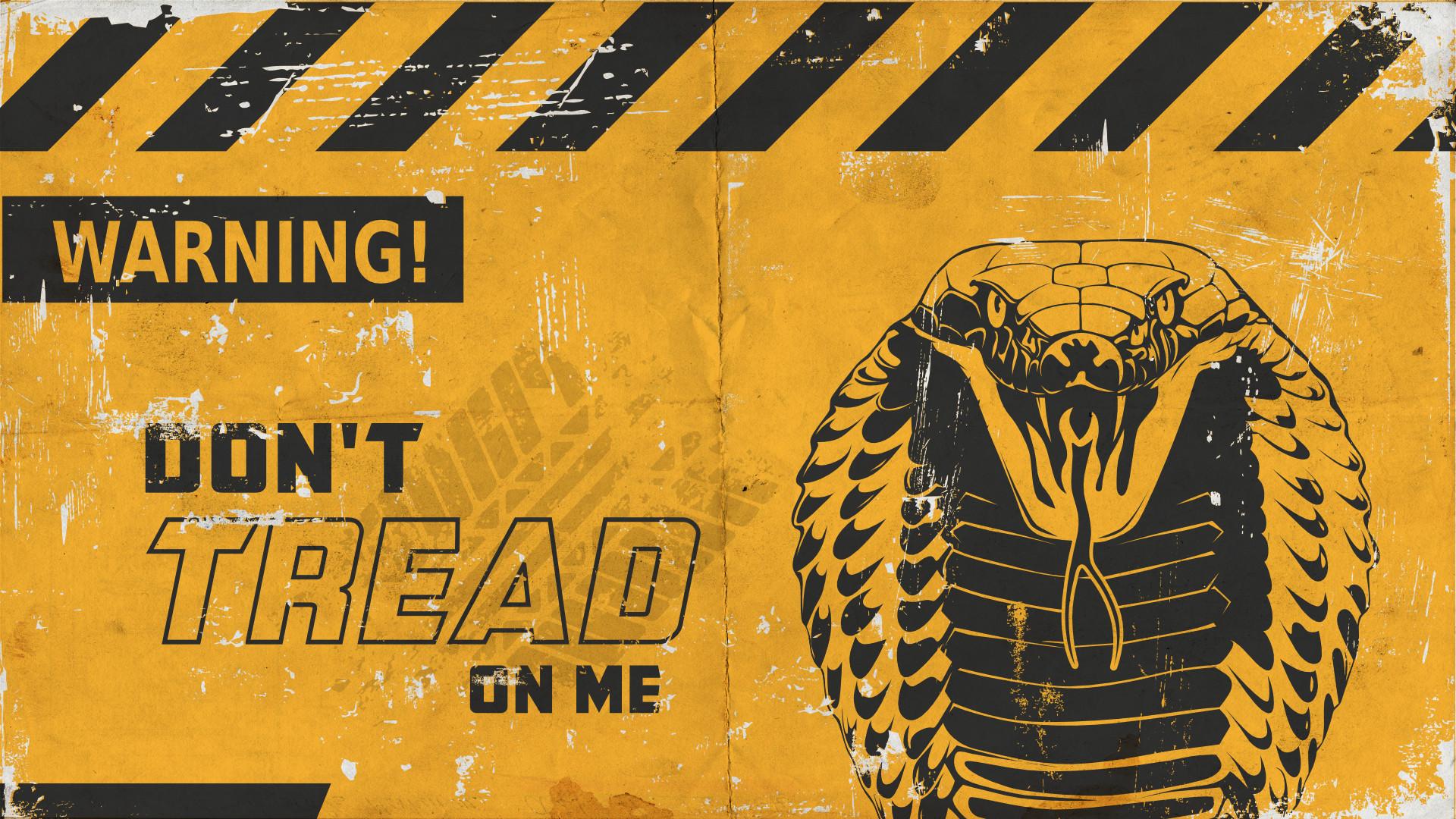 Обои snake, Dont tread on me, Metallica. Музыка foto 13