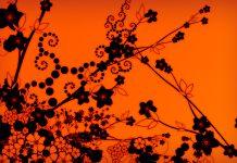 Download Free Black and Orange Wallpaper.