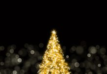 iPad retina wallpaper sparkling christmas tree parallax.