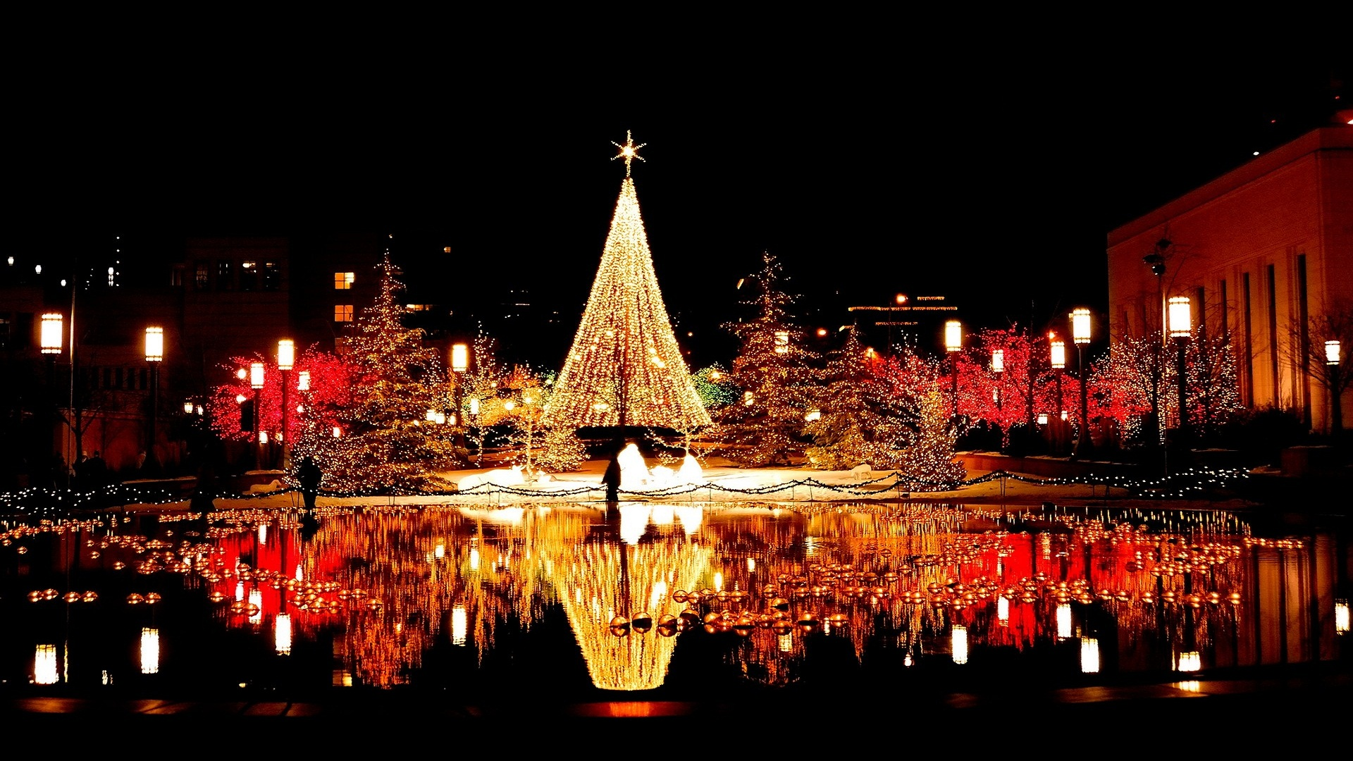 christmas reflection light 1080p hd photos
