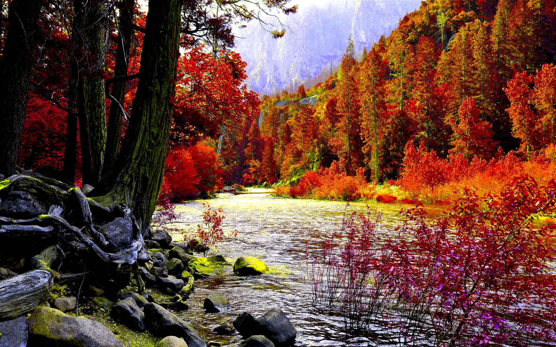 Autumn River HD Wallpaper