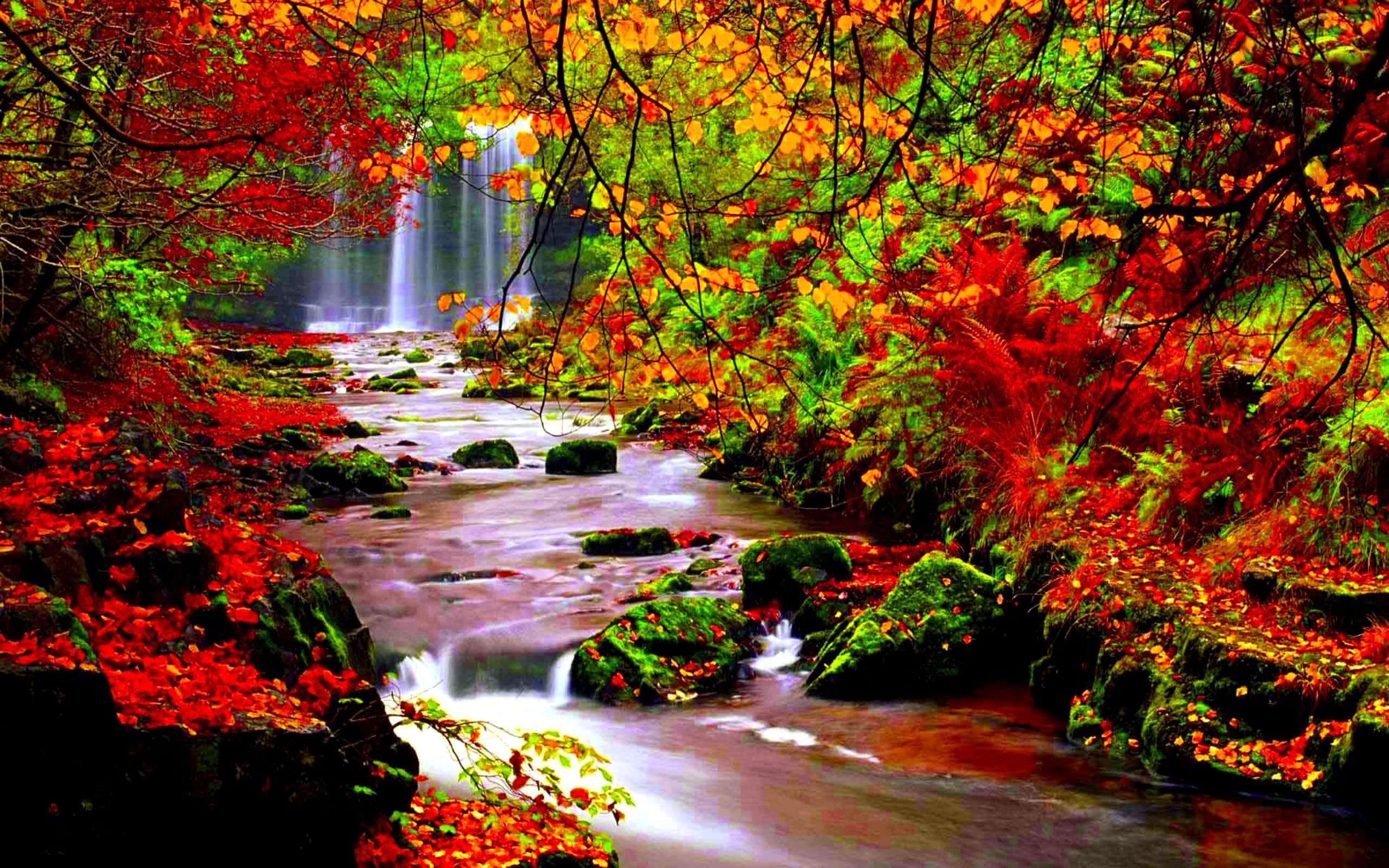 autumn river hd wallpaper | pixelstalk