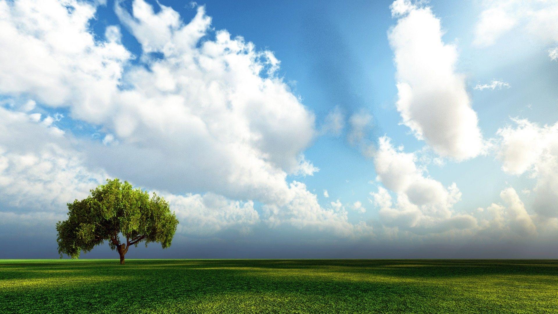 Download 3D Nature Image.