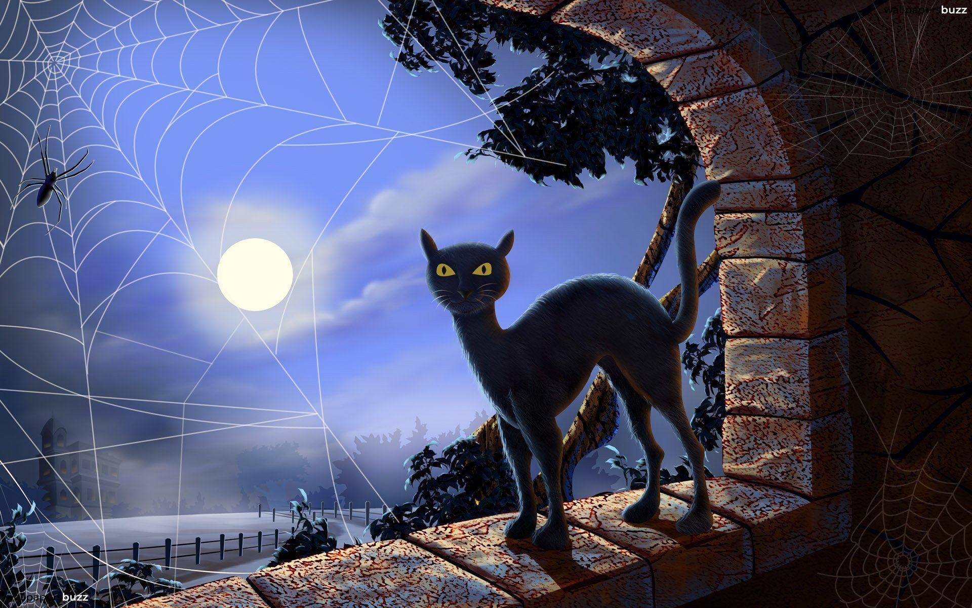 Halloween Cat Desktop Backgrounds 1