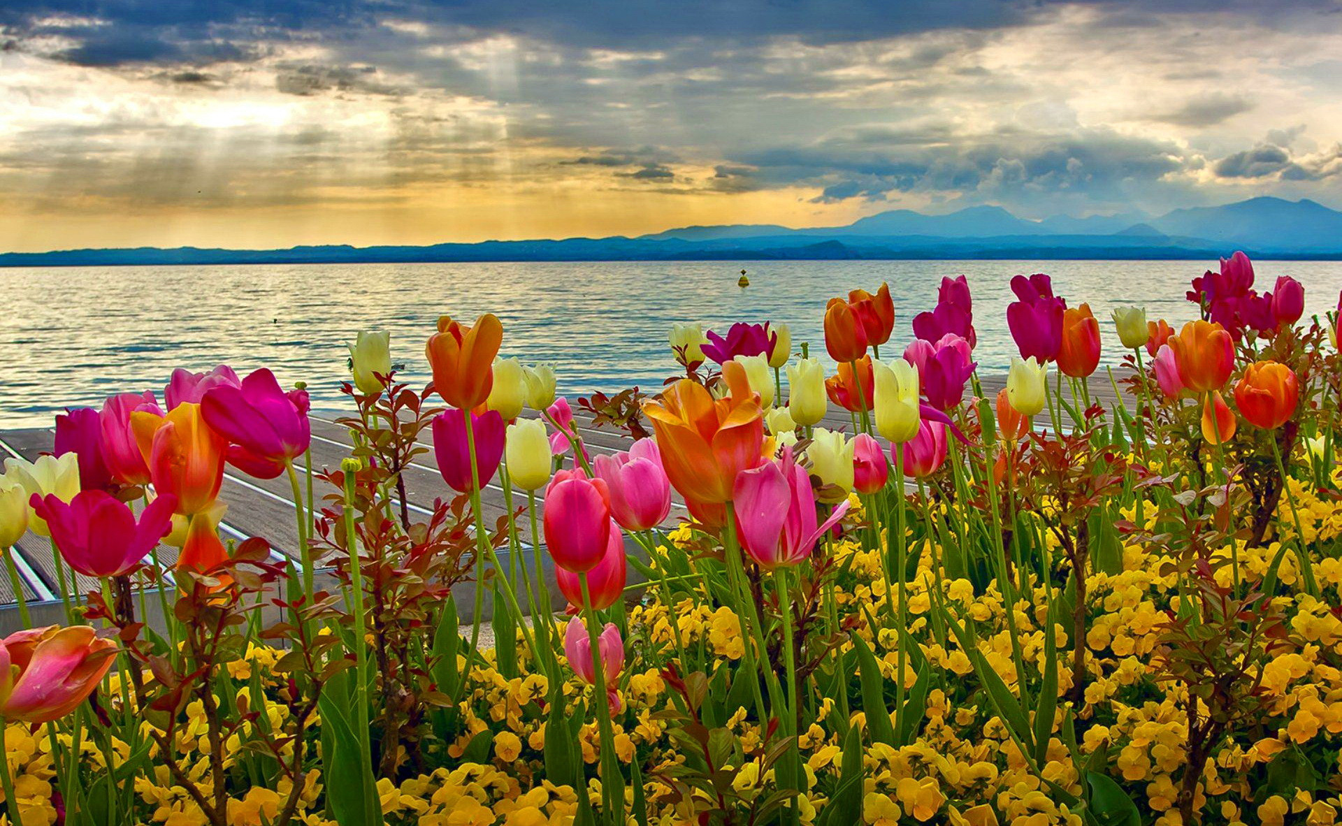 Beautiful Spring Images Download Pixelstalk Net