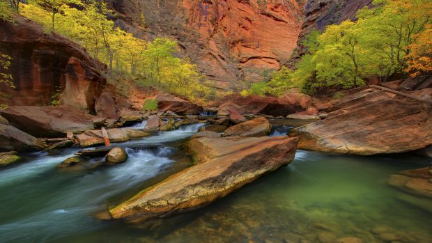 zion national park narrows wallpaper 1.
