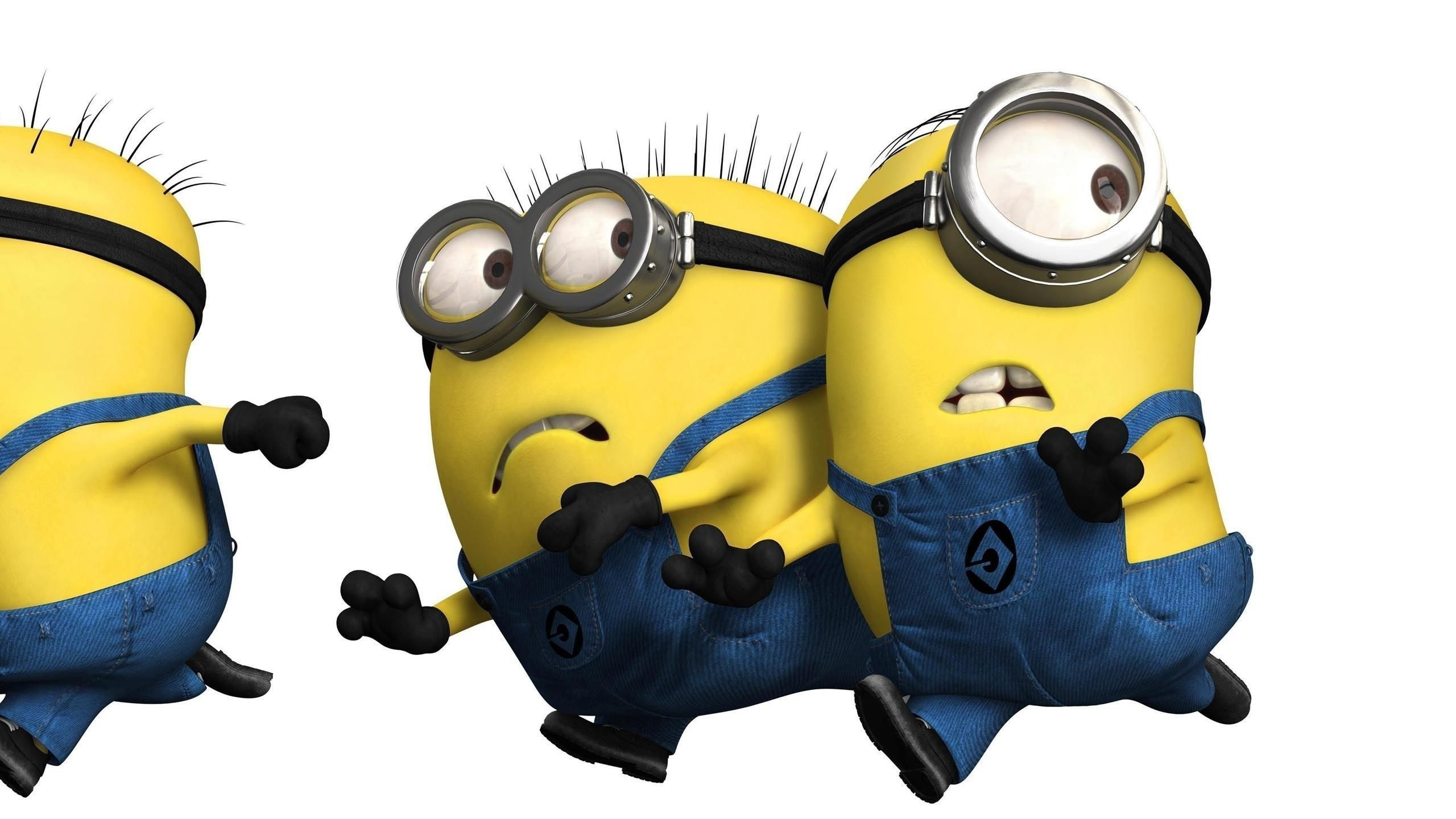 funny minion wallpapers hd free download | pixelstalk