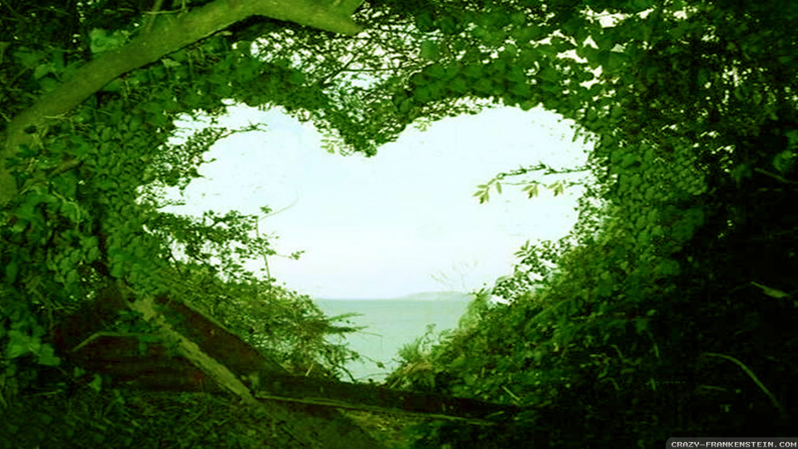 Nature Love Wallpaper HD Free download.