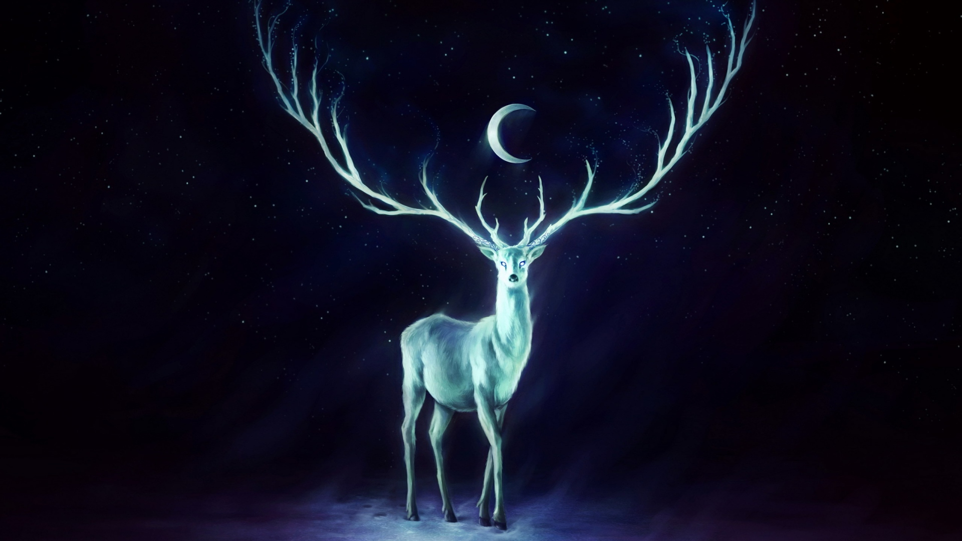 Deer HD Wallpapers 2.