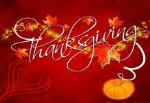 Thanksgiving Image HD Free Download.