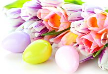 Easter Backgrounds 1.