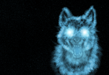 Awesome Cool Wolf Background.